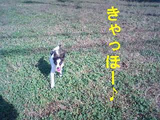 MA320011-0001.jpg
