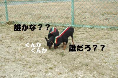 s-DSC_0019-1.jpg