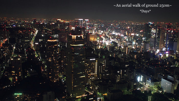 夜景散歩1