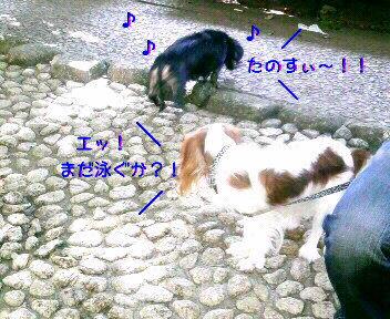 20090817001437.jpg
