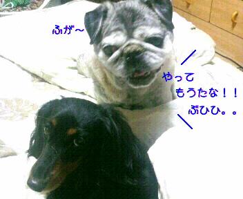 20090828231611