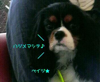 20090924225501.jpg