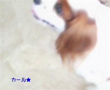 20090924225701.jpg