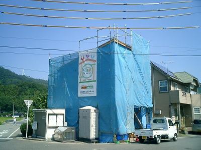 maruyama8.jpg