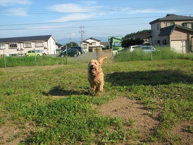 08.9.16康介