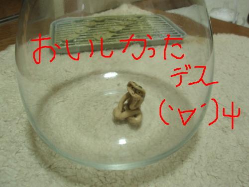 PC280088-1.jpg