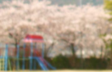 20090408_06.jpg