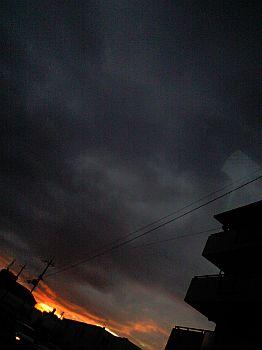 20090815_02.jpg