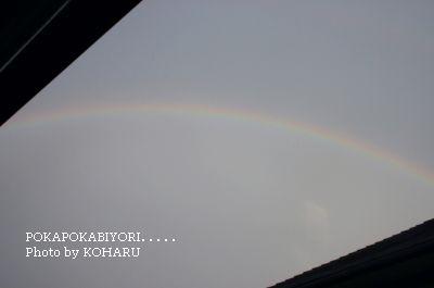 sky08.jpg