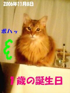 PA0_0051.jpg
