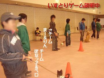 appi11.jpg