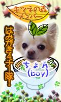 k_member_chon.png