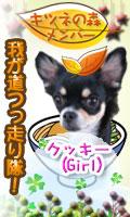 k_member_cookie.jpg
