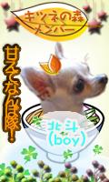 k_member_hokuto.png