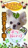 k_member_puri.png