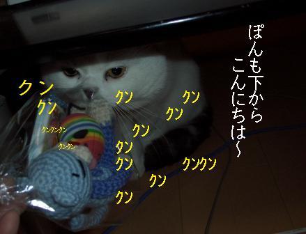 ねこ314 204