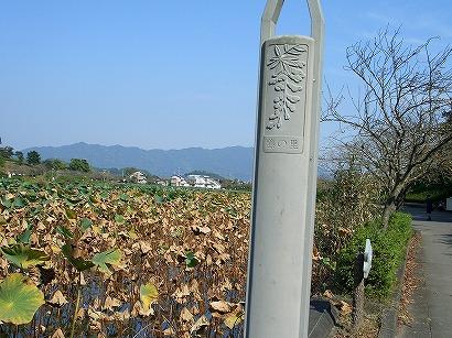 118蓮華寺公園 015
