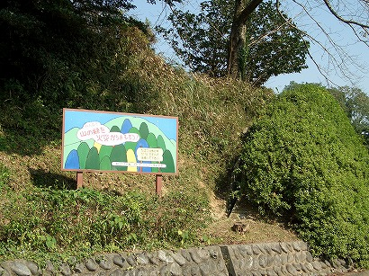 118蓮華寺公園 088