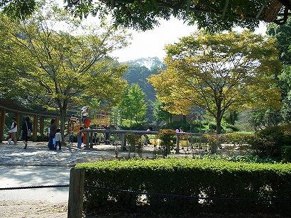 118蓮華寺公園 072