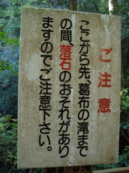 ねこ1122と紅葉(大洞院・お国神社) 022