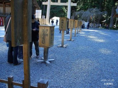 ねこ1122と紅葉(大洞院・お国神社) 112