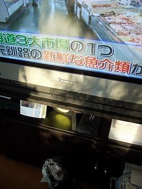 0117ねこ 209