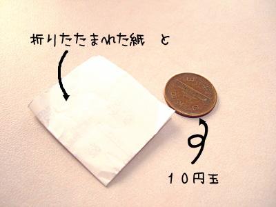 081106-1.jpg