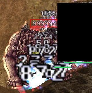 20081027 (6)