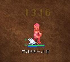 20090119 (11)
