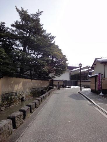長町・大野庄用水沿いの道