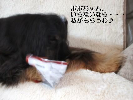 2009_02280023.jpg