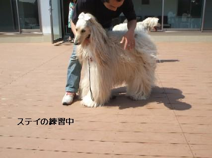 2009_05020128.jpg
