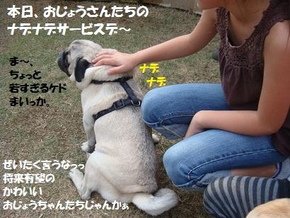 DSC04243.jpg