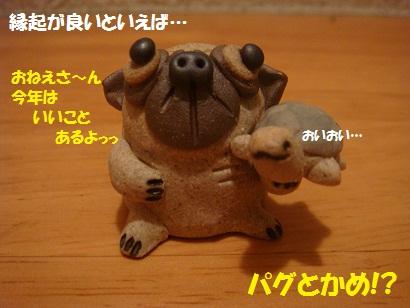 DSC07702.jpg