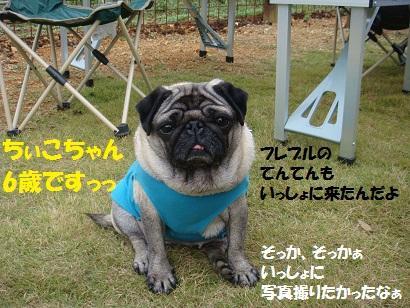 PMBS4121.jpg