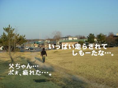 2008031004.jpg
