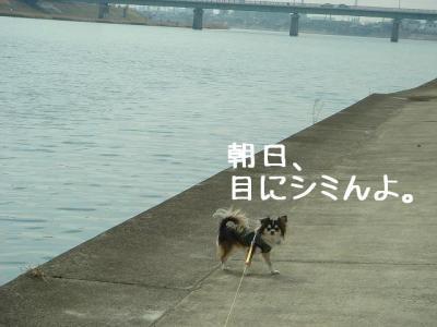 2008031203.jpg