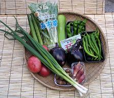 夏の京野菜 028