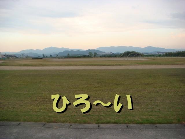 bmDSC03335.jpg