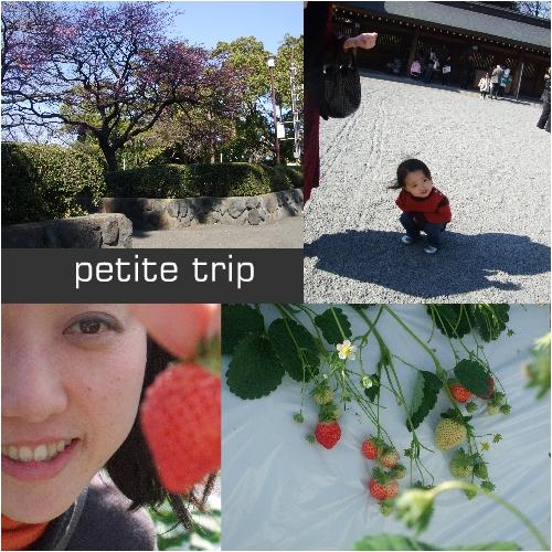 trip.jpg