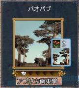 0208バオバブ木