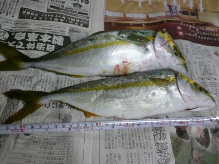繧キ繝輔か繝ウ+987_convert_20090831190558