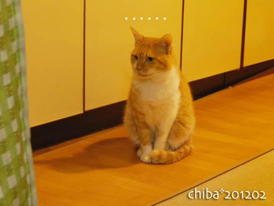 chiba12-02-58.jpg