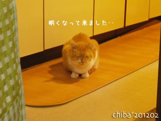 chiba12-02-60.jpg