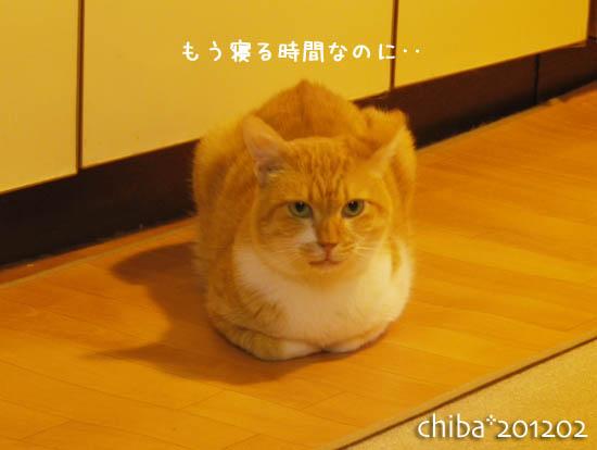 chiba12-02-61.jpg