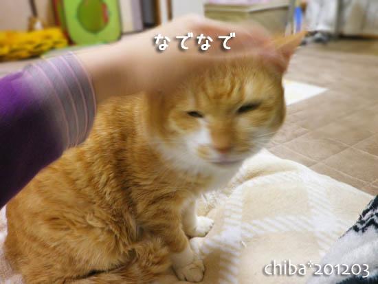 chiba12-03-142.jpg