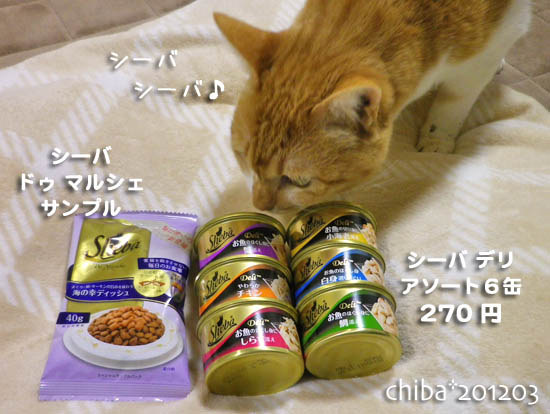 chiba12-03-162.jpg
