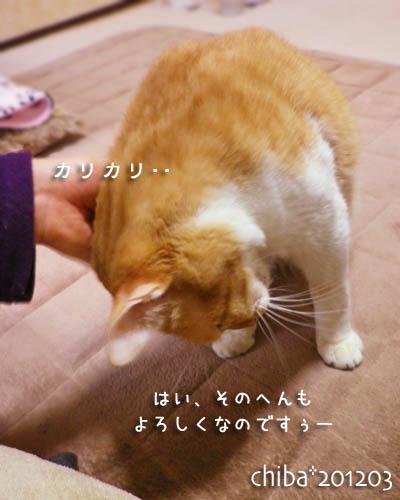 chiba12-03-84.jpg
