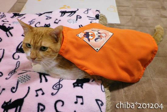 chiba12-04-20.jpg