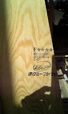 20081117103452